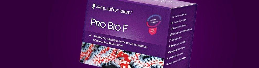 Reef Probiotika und Nitrifikation